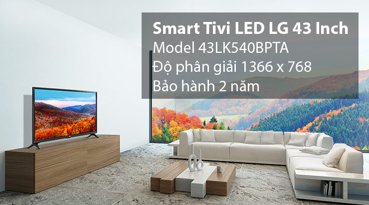 Smart Tivi LED LG 43 Inch 43LK540BPTA